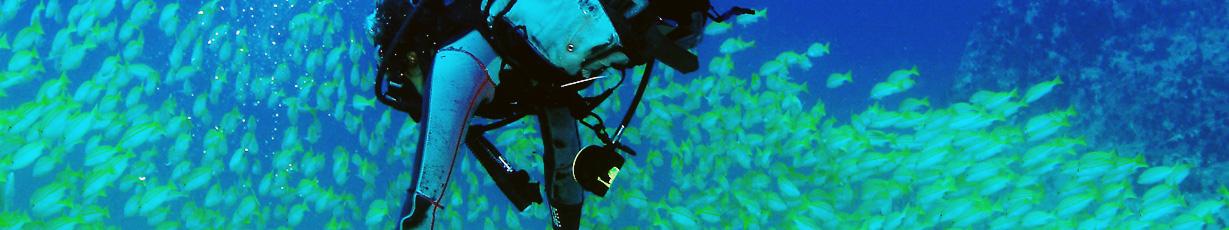 Diving_in_Seychelles_Slider_02